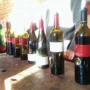Weine online kaufen im Onlineshop vom Weingut Schönhals - hier erfahren Sie wie leicht das geht!