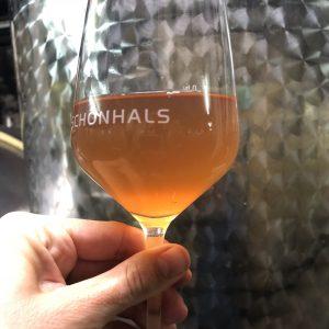 Ein frischer prickelnder Federweißer vom Spätburgunder Rosé