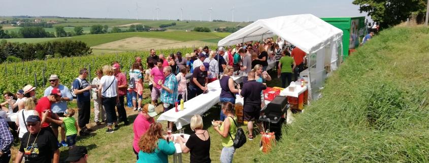 Weinwanderung Bechtolsheim Pfingsmontag 10.06.2019