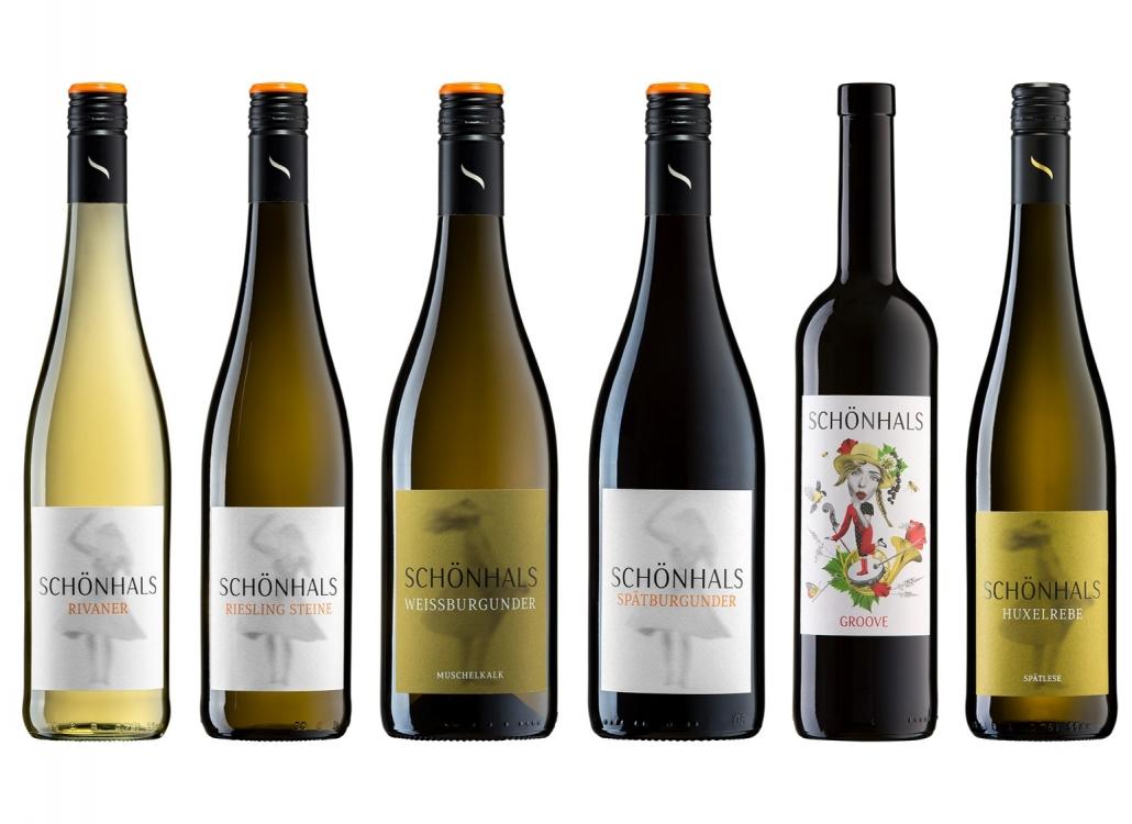 Online-Weinprobe Weinlese Backstage